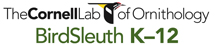 Cornell Lab of Ornithology - BirdSleuth