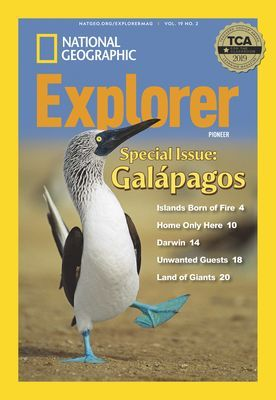 Cover image for issue