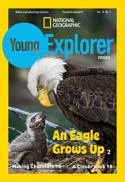 Cover for Voyager (Grade 1) issue 2017-05