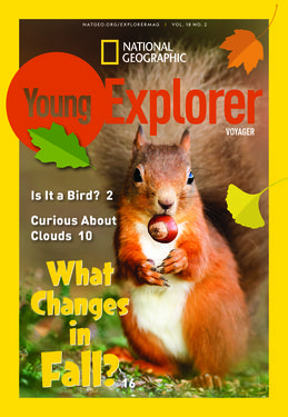 Cover for Voyager (Grade 1) issue 2018-10