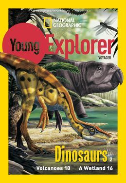 Cover for Voyager (Grade 1) issue 2018-11