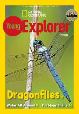 Cover for Voyager (Grade 1) issue 2021-03
