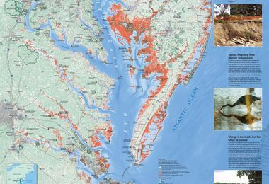 Chesapeake Bay Map Gallery National Geographic Society This modern map of chesapeake bay is printed on high quality fine art paper and available in a choice of five sizes. chesapeake bay map gallery national