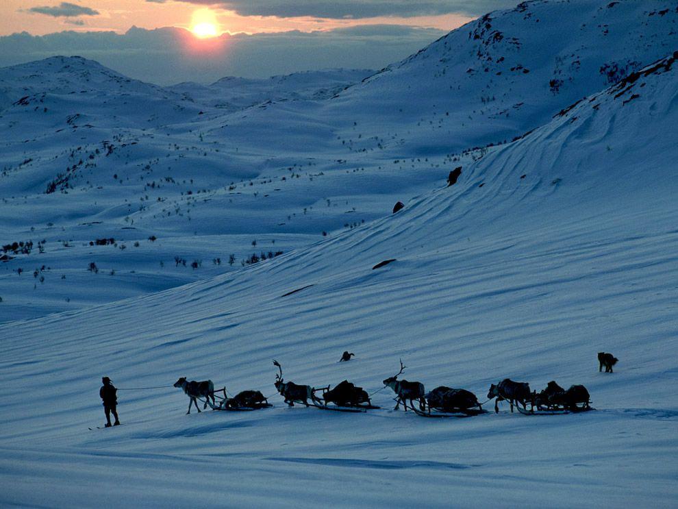 Endangered Sami Language Becomes Extinct