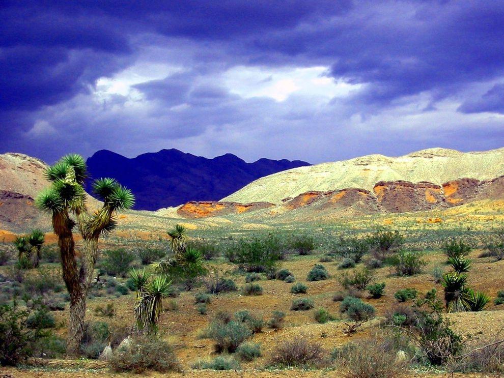habitat | National Geographic Society