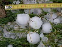 Photo:  Measurements being taken of large hail stones