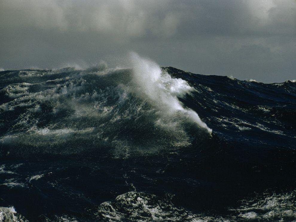 e53c34f4a8bf51 ocean