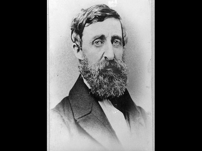 Happy Birthday Henry David Thoreau National Geographic
