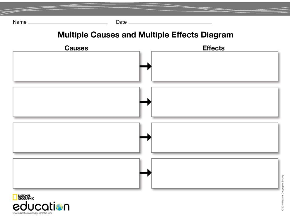 Multiple Causes and Multiple Effects    Diagram      National