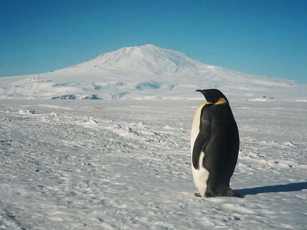 Mount Erebus | National Geographic Society