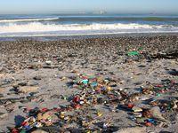 Photograph: Trash on a beach.