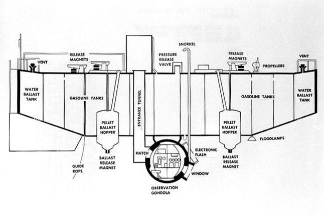 diagram of the trieste