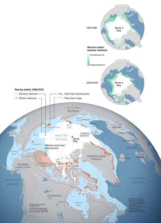 Polar Bear Territory