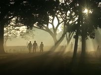 Photograph of an early morning scene.