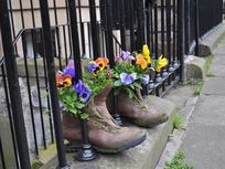 Picture of shoes and flowers.