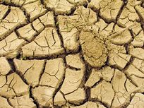 Picture of dry land.