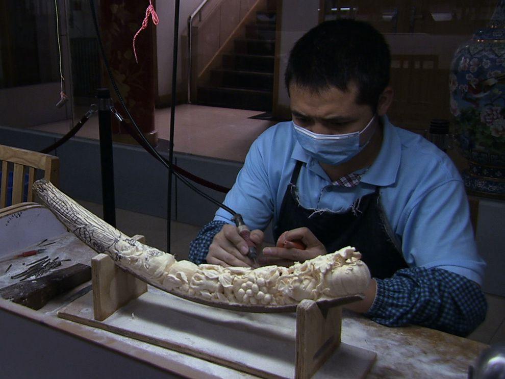 The Economics of the Illicit Ivory Trade