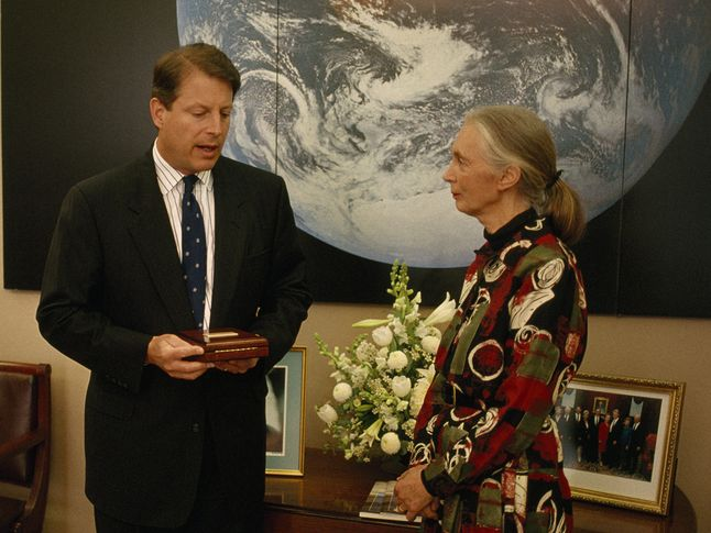 Gore and Goodall