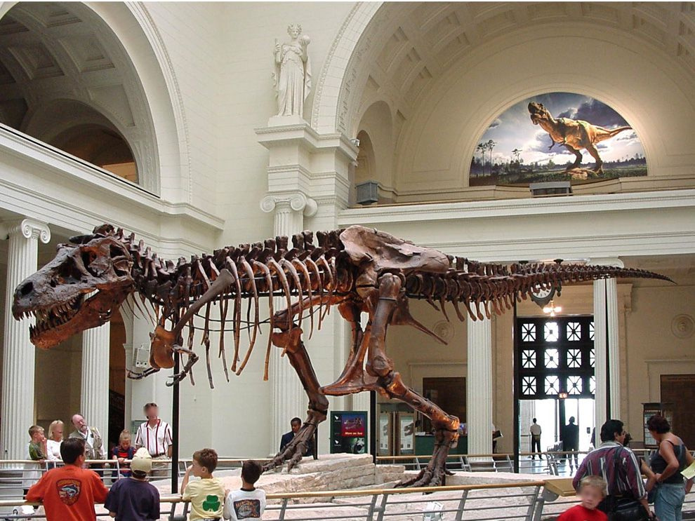 largest t rex discovered national geographic society