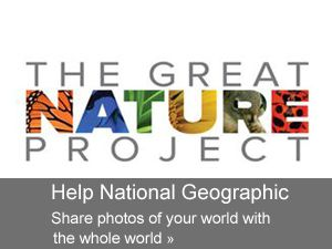 The Great Nature Project - teachers