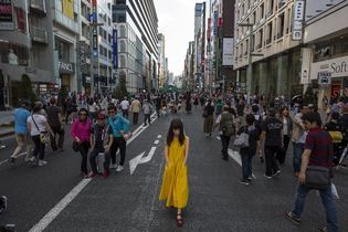 Through the Lens: Tokyo Transect
