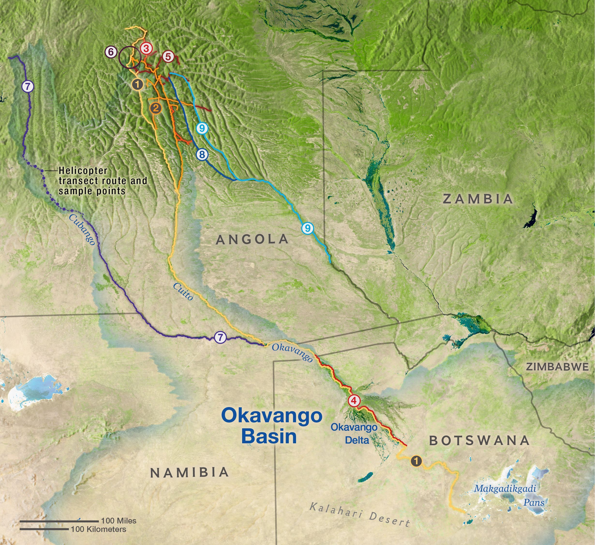 Okavango Wilderness Project | National Geographic Society