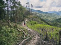 Deforestation in Penampang, Ulu Papar, Sabah, Malaysia.