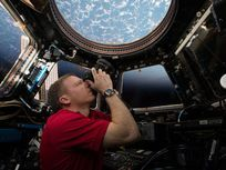 This is an image of astronaut Terry Virts taking photographs of Earth through the windows of the cupola of the International Space Station.