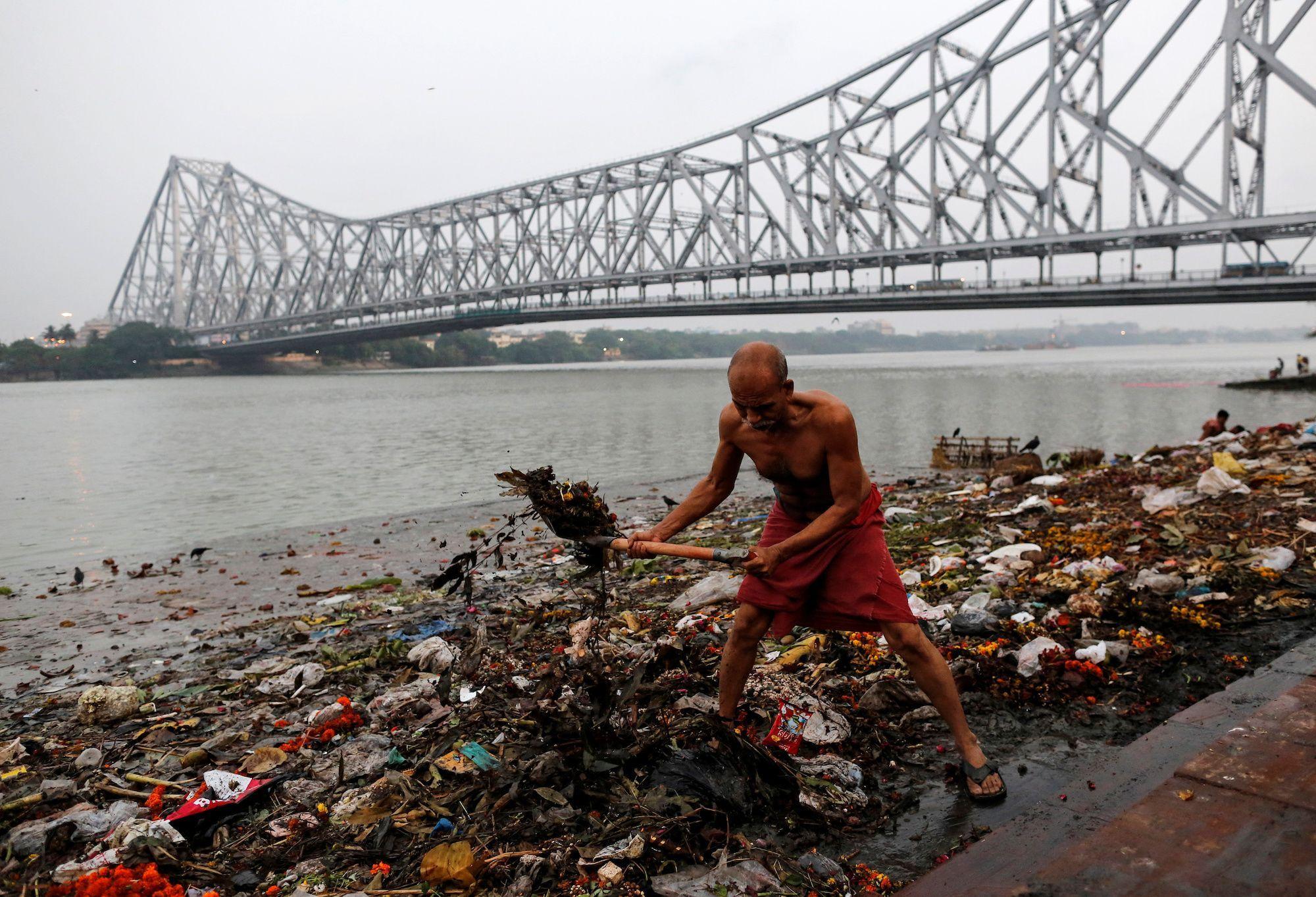 Rechinul de Gange