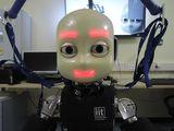 Robot: iCub