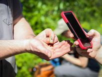 A photograph of a National Park Service employee assisting someone with photographing a grasshopper with their smartphone.