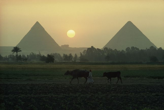 Egyptian pyramids in sunset