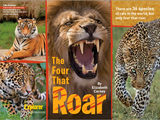 The Four that Roar
