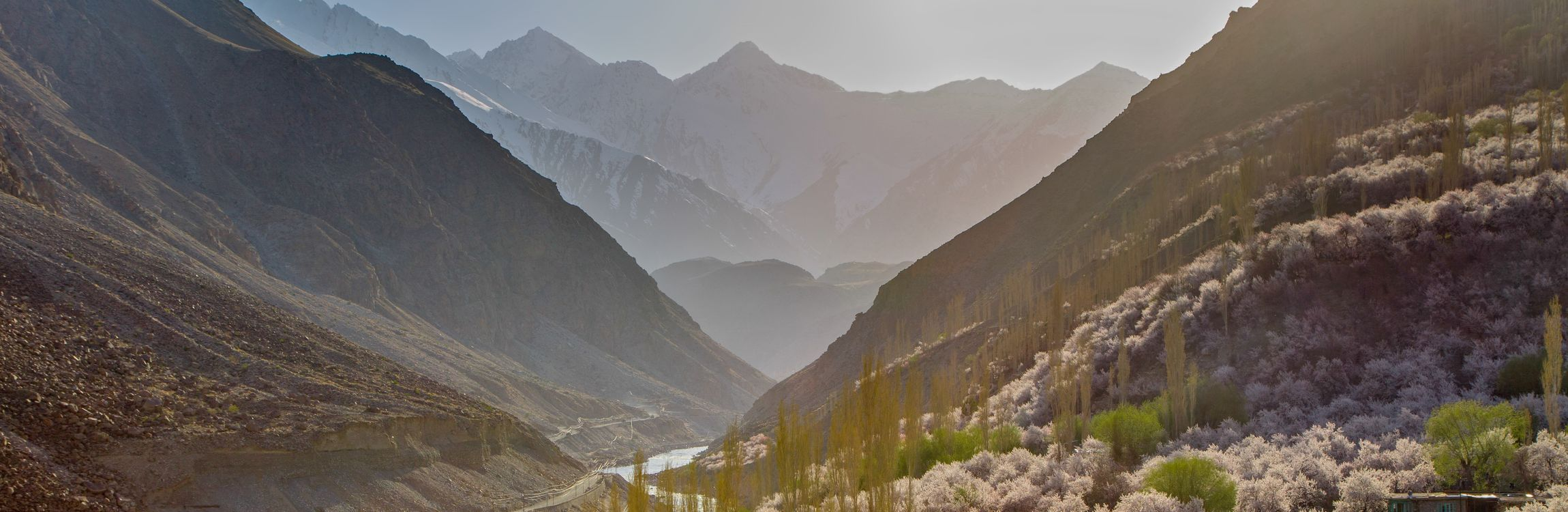 Extreme Environments: Himalayan Climate Change