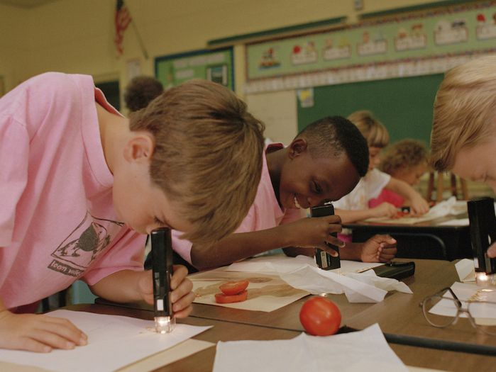 A photograph of students studying seeds in a classroom using handheld magnifying devices.
