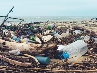 <p>Illustrating plastic waste, like this plastic garbage on a Black Sea beach, helps communicate the problem to others.</p>