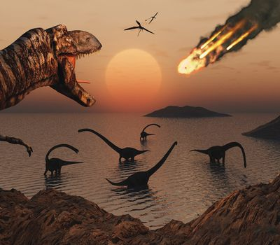 Two scientific theories prevail as to what caused the extinction of the dinosaurs. One, an asteroid hit Earth stirring up a cloud of dust large enough to change the climate, and two, a massive volcanic eruption spewed enough carbon dioxide to alter the climate.