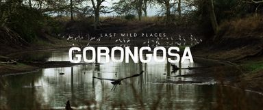 Last Wild Places: Gorongosa