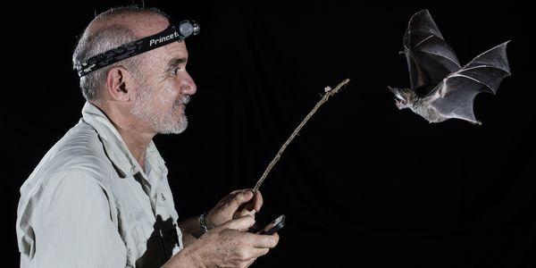 Follow Mexico's 'Bat Man' on a Search for Vampire Bats