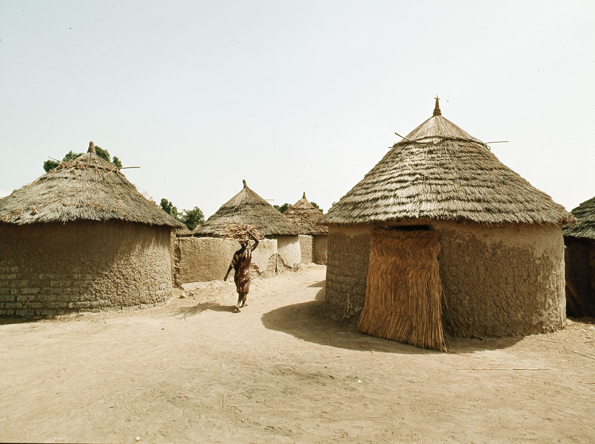 Picture of: The Mali Empire National Geographic Society