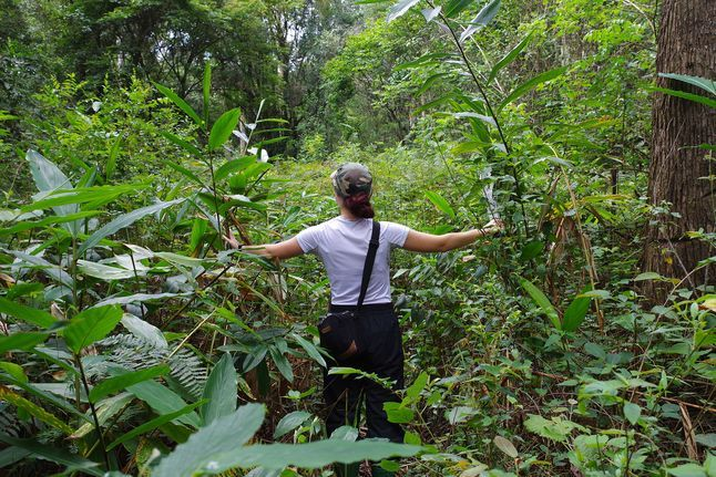 Biodiversity Tanzania 2686602