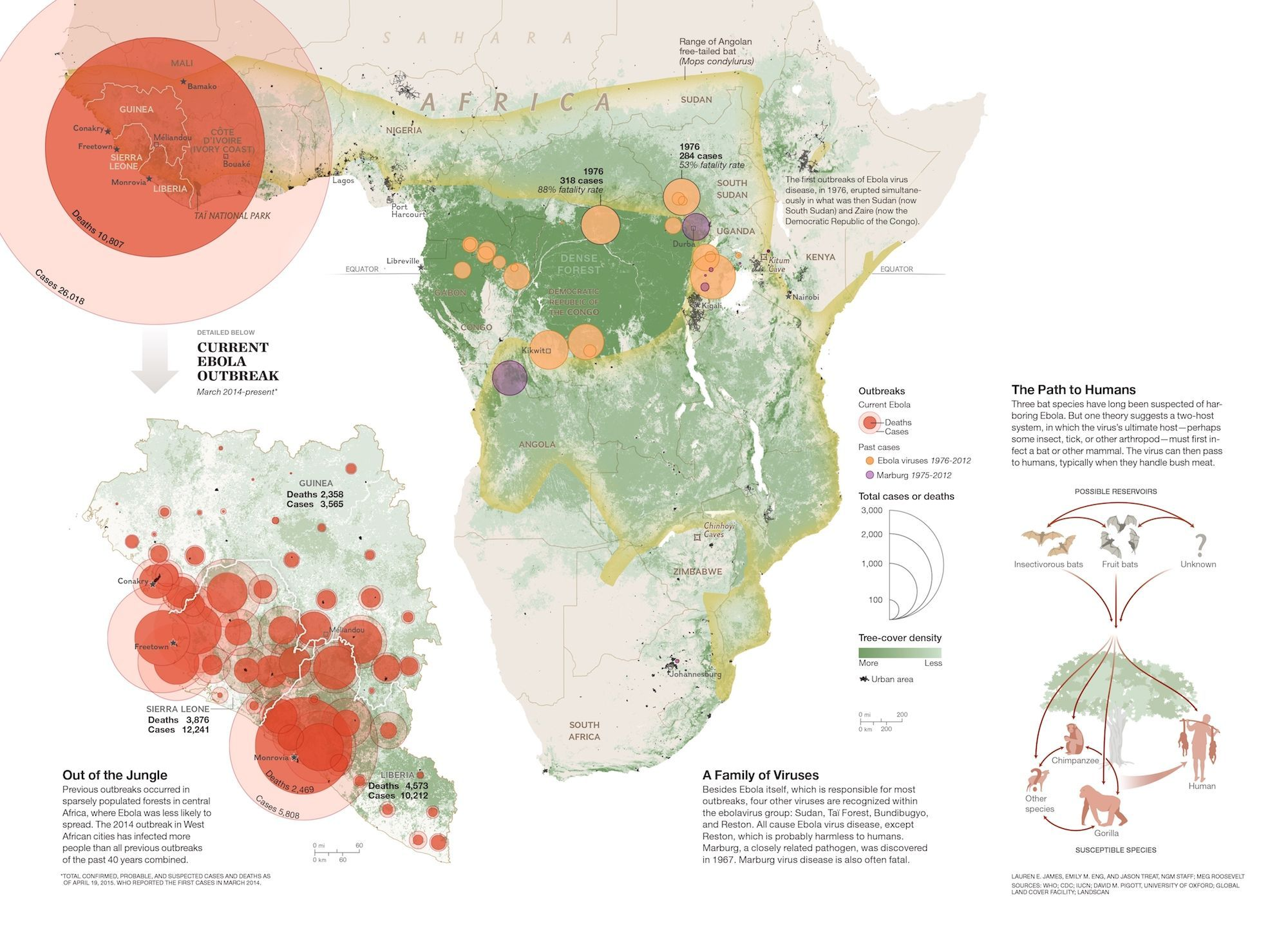 Ebola In South Africa Map Seeking the Source of Ebola | National Geographic Society