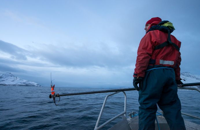 Picture of team member ready to tag a humpback whale