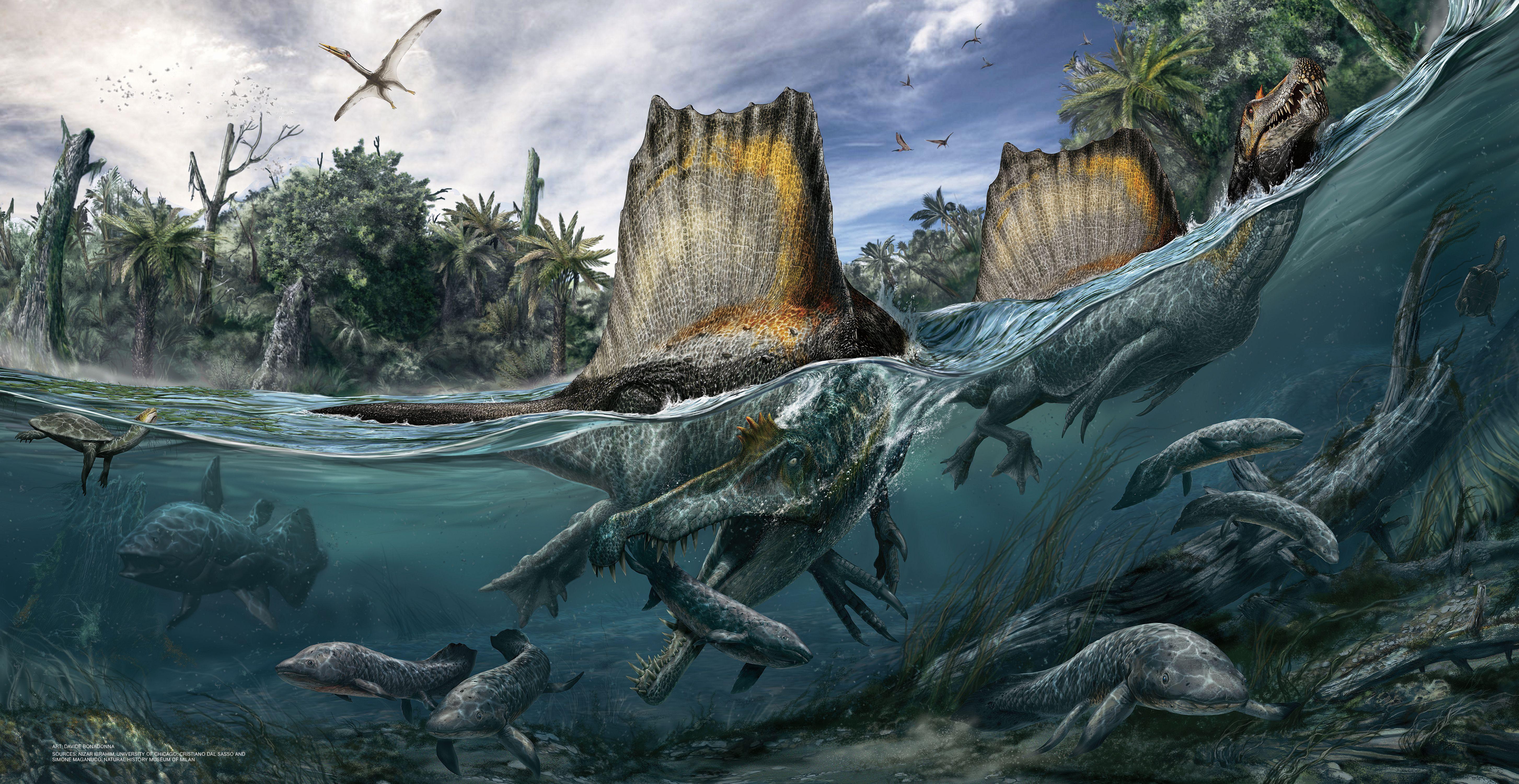 Nizar Ibrahim: Spinosaurus