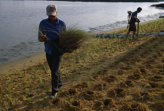 Wetland Restoration MD