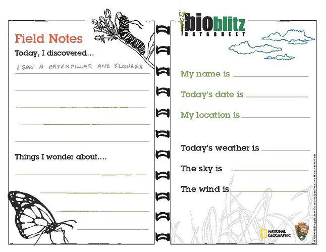 BioBlitz Field Notes Datasheet