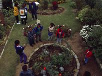 A photograph of a community garden in the New York City boroughs of Queens.