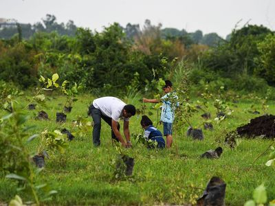 <p>A man plants a tree with his children in New Delhi, India, as part of a local campaign to fight air pollution.</p>