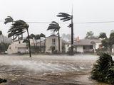 The Saffir-Simpson Hurricane Wind Scale