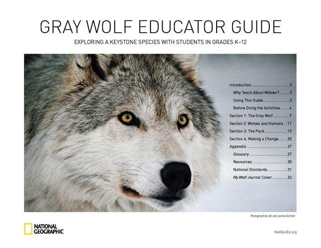 Grey Wolf PDF Free download